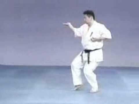Yantsu Kyokushinkai kata Image 1