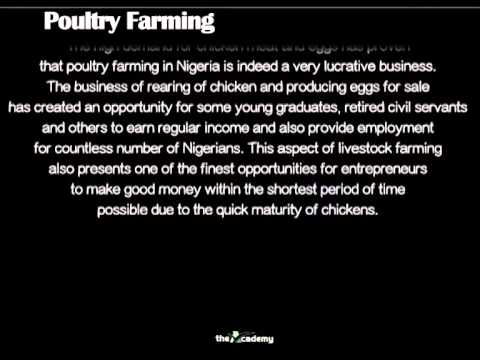 AGRI-BUSINESS IN NIGERIA: Top Lucrative Investments