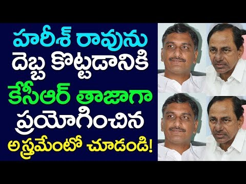 CM KCR New Strategy On Harish Rao, Telangana News, TRS