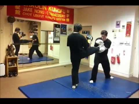 Choy Lee Fut & Sanda Training, London UK Image 1