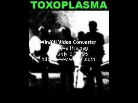 Toxoplasma - 1981