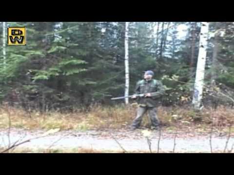 caza liebre
