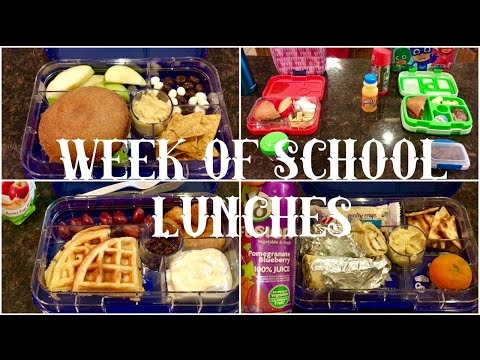 Week of School Lunches - School Lunch Ideas - May 2017 Ep. 2
