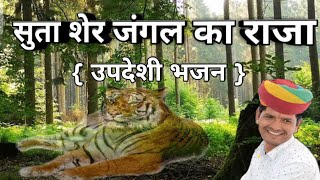 सुता शेर जंगल का राजा !! suta sher jangal ka raja !! shyam vaishnav