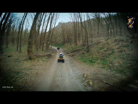 Природа и квадроциклы. Что может быть лучше?