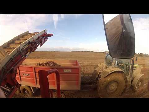 South East Veg. - Carrot harvesting Simon Cruiser & JD 6190R
