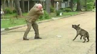 පාඩුවේ පාරේ යන්නත් නෑනේBert Case: Dog Attack - WLBT Archive