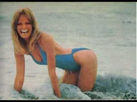 Cheryl Tiegs Swimsuit Retrospective 1966-2004