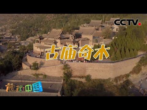 中國-地理·中國-20201013 黃河岸邊的古廟奇木