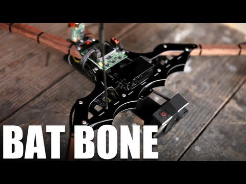 Flite Test - Bat Bone