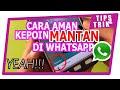 Tips Cara Melihat Status Mantan Di Whatsapp Tanpa Diketahui.. Aman!