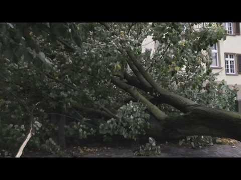 Orkan Ksawery Uderzył W Zielonej Górze