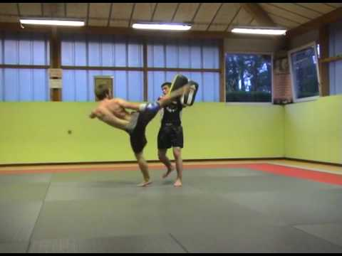 mma muay thai training Image 1