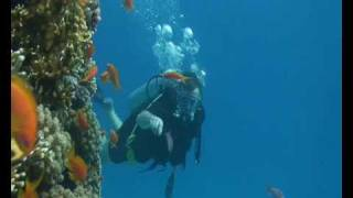 Red Sea Deep Diving