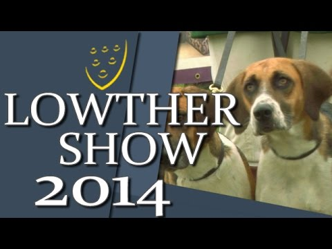 Lowther Show REVIEW & Round Up