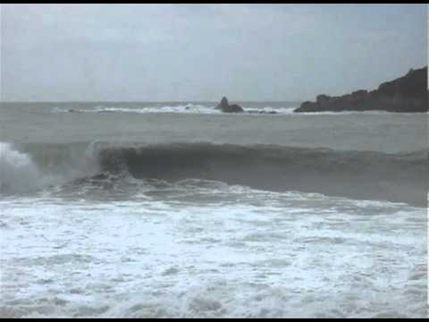 Stafford, Bay, Track, smoothwater, jackson, new, zealand, surfing, west, coast, tramp, hike, lefthander, riviera's, haast, westland, beach, break, hunting, deer, hut, doc, big, wave, reef, south, island