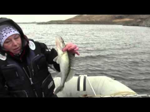 когда закрытие рыбалки в казахстане