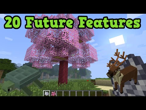 Minecraft - 20 Future Features