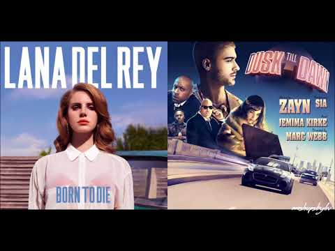 download lagu Die Till Dawn - Lana Del Rey & Zayn gratis