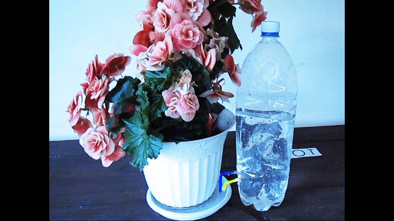Автополив комнатных растений с помощью медицинских 30