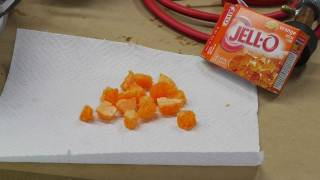 Freeze-drying Jello gelatin with an improved cold trap