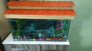 Aquarium (fish tank )::first time setup tips