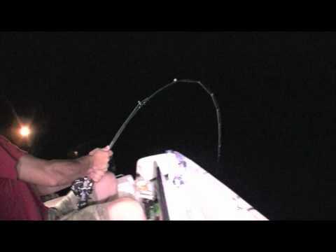SHARK FISHING - Adam breaks his rod on a huge skate (or ray?)