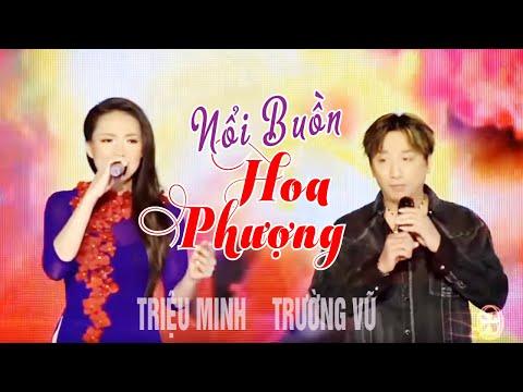Nổi Buồn Hoa Phượng - Show Hè Trên Xứ Lạnh - Trường Vũ+triệu Minh [official] video