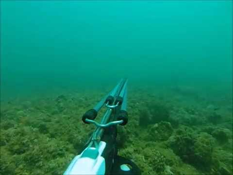 Chasse sous-marine madagascar novembre 2014    Spearfishing mozambique channel