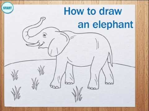 how to draw elephant youtube. Black Bedroom Furniture Sets. Home Design Ideas