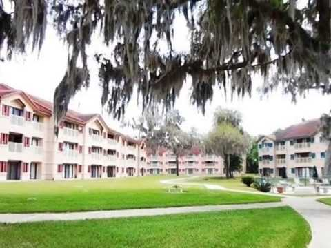 Homes for Sale - 99 Broad River Place Bldg 1 Unit 303 Welaka FL 32193 - Amy Heath