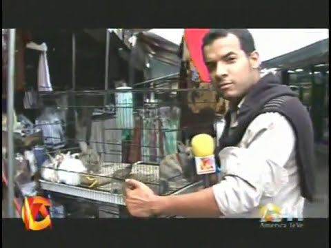 MERCADO DE LAS PULGAS, un Reportaje de Aday Palancar.wmv