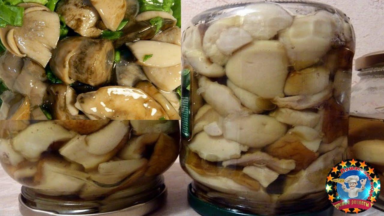 Маринование белых грибов в домашних условиях рецепты 531