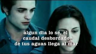 Watch Alejandro Fernandez Yo Naci Para Amarte video