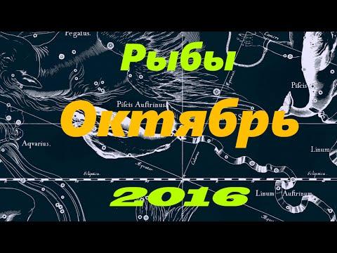 тортик форме гороскоп на 1 октября 2016 года рыбы собака сильным
