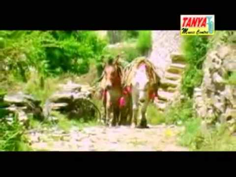 Aatth Khachri Himachali Pahari Nati(video)..surender Sharma.mp4 video