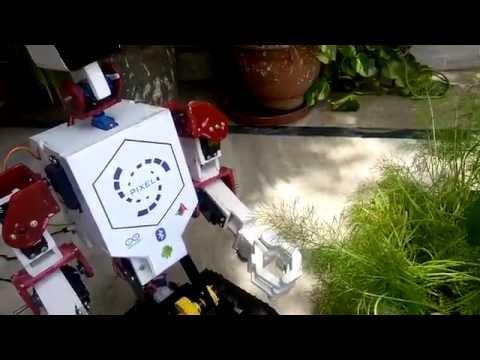 Humanoid Robot PIXEL plucking grass
