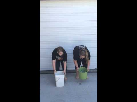 P!nk and Carey Hart being challenged by sisters for the ALS Ice Bucket Challenge