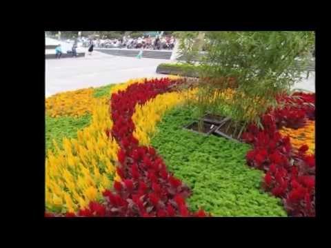 Los paisajes y las flores mas bellas del mundo 2 youtube for Bazzel el jardin de los secretos