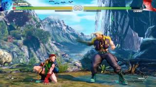 Street Fighter V (Beta) - PC Gameplay [GTX 960] Max Settings 1080p 60 FPS