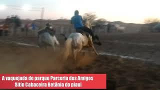 Vaquejada do parque paceria dos amigos sitio Cabaceira Betânia do piaui