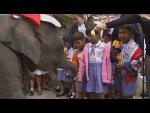 Elephants replace reindeer for Santa Claus at Thailand school