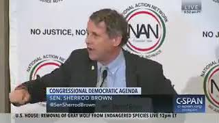 """Blue Crime Wave: Sherrod Brown Says """"If Stacey Abrams Doesn't Win In Georgia, They Stole It"""""""