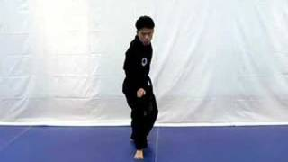 Hapkido Knife Defense Stance