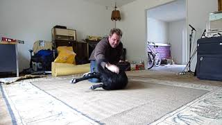 Greeting my dog Roma after work 4/22/2010