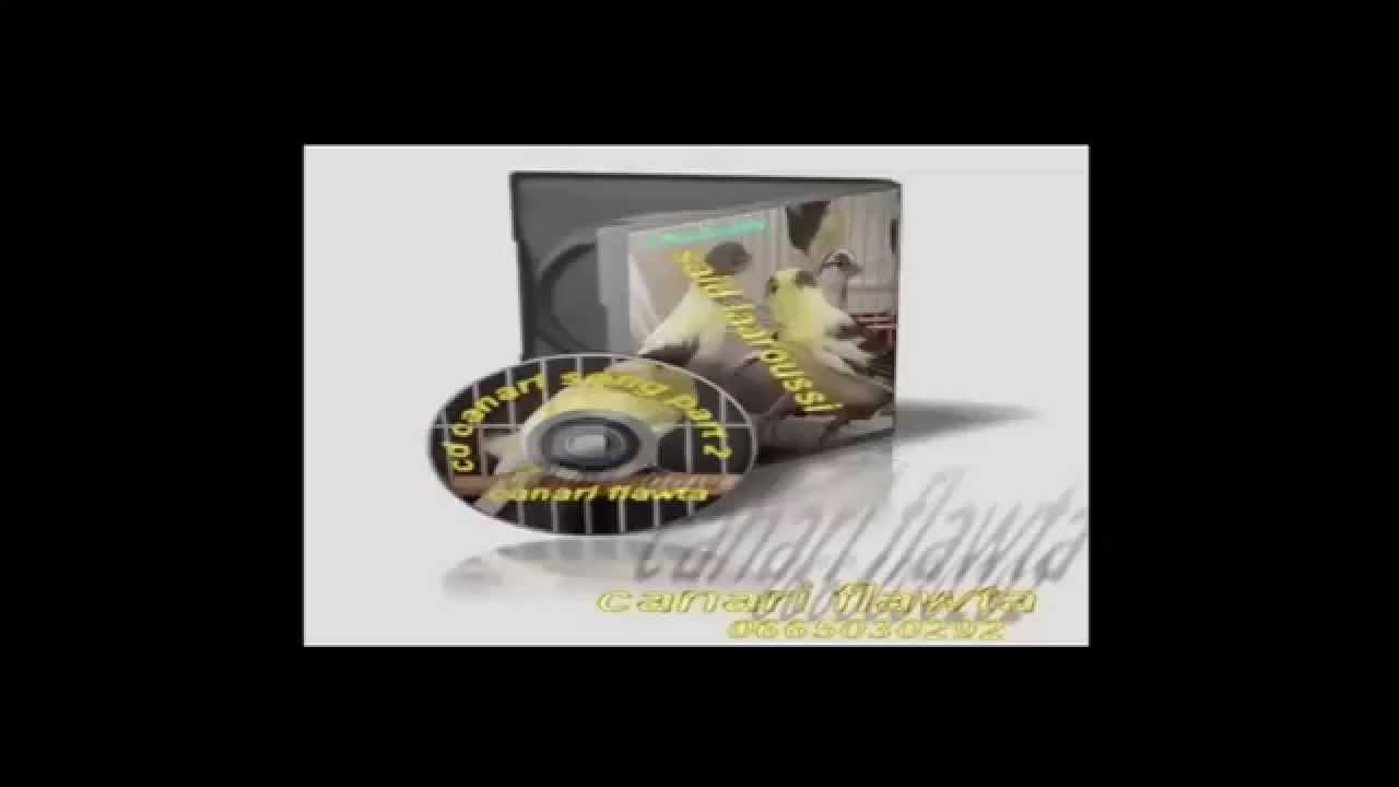 Telecharger Pilote De Son Dell Optiplex Gx620