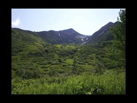 Palmer Creek, Hope Alaska Slideshow