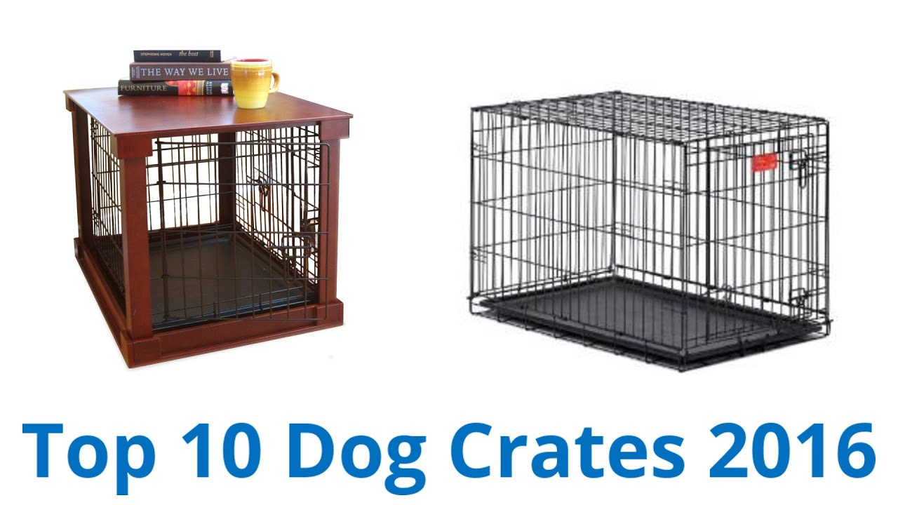 10 Best Dog Crates 2016