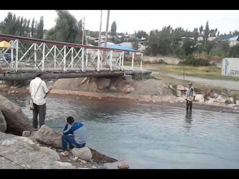 рыбалка в микрорайоне юг