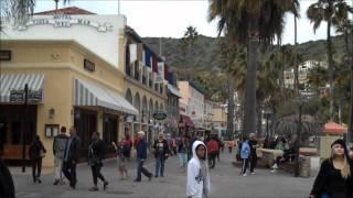 Carnival Paradise Cruise to Catalina Island